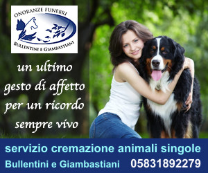 Tutto cani t c for Cerco dog sitter